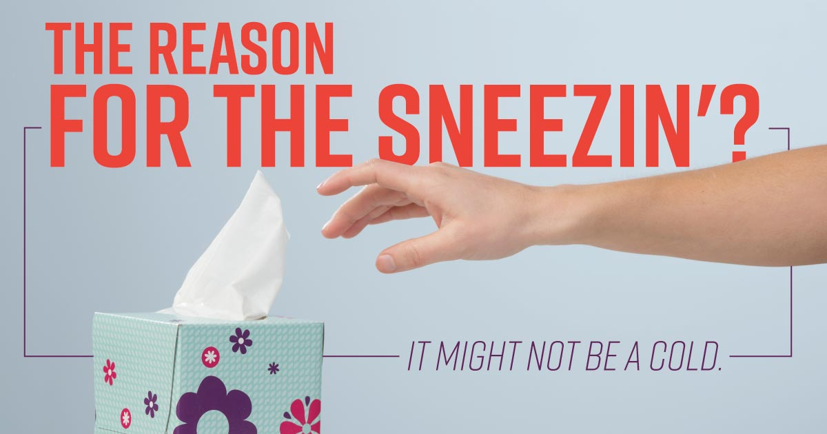 The reason for the sneezin'? It might not be a cold.