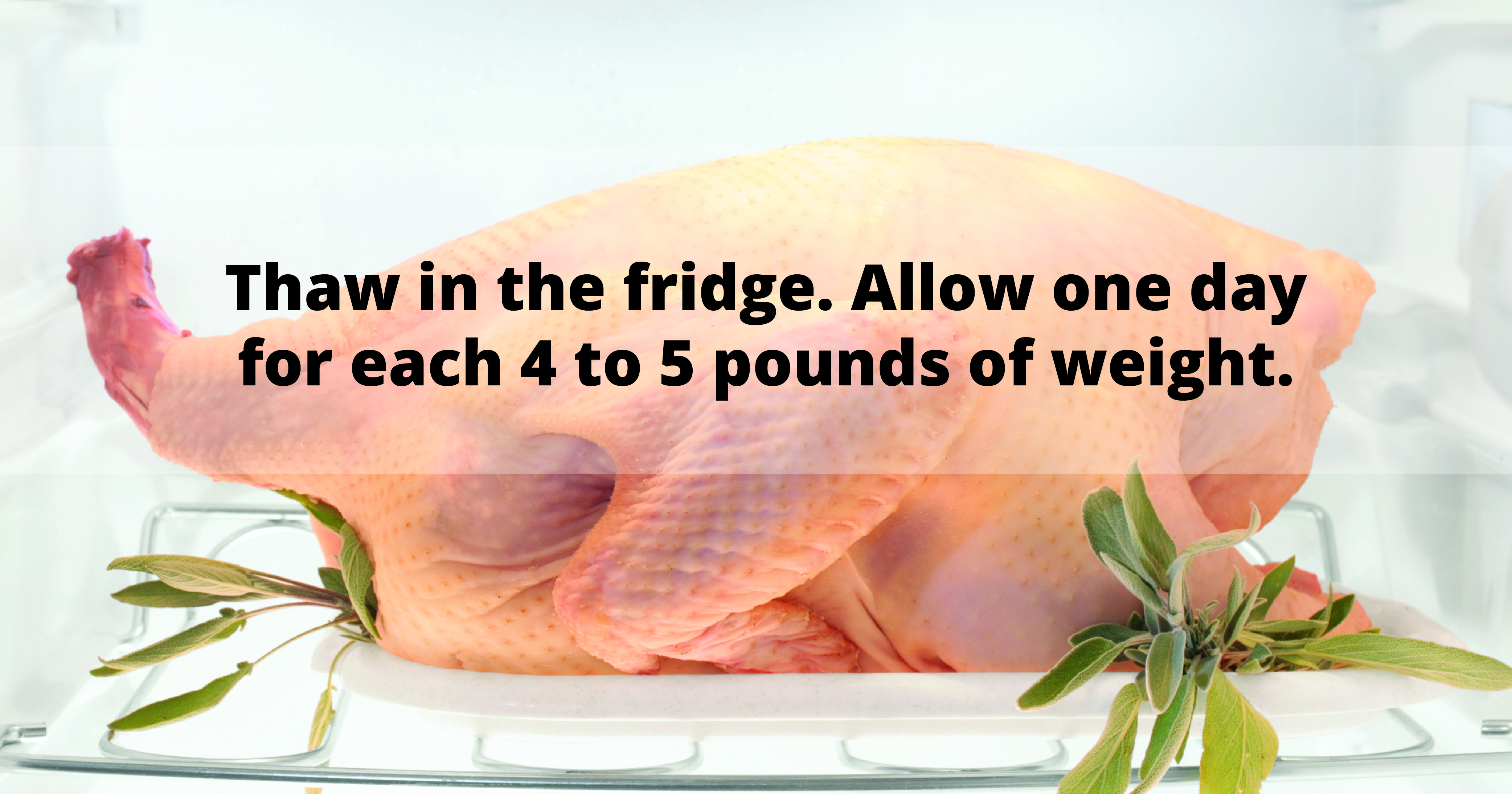 A raw turkey garnished with sage sits on a white tray in a white refrigerator. Text reads: Thaw in the fridge. Allow one day for each 4 to 5 pounds of weight.